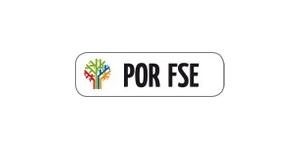 Pulsante Fse