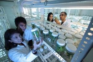 La ricerca apre le porte alla scuola e alla formazione