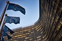 Questionario della Commissione europea sul sostegno all'occupazione e mobilità dei lavoratori